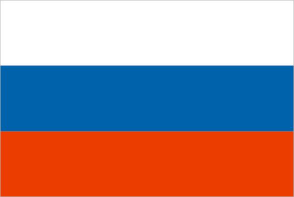 Флаг РФ (15х22 см)